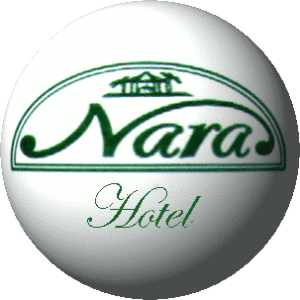 Hotel Cecco di Nara Massarosa